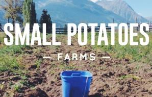 Small Potatoes Farms