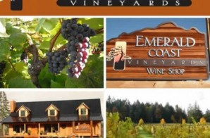 Emerald Coast Vineyards