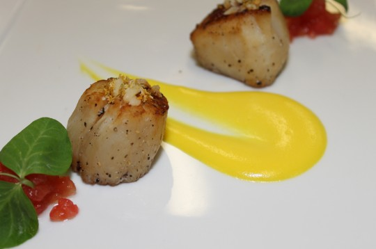 Parmesan Crusted Scallops with Cream of Saffron Cauliflower Purée