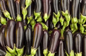 Eggplants (Greenhouse)